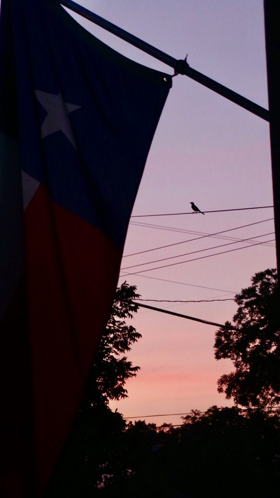 Texas in the evening