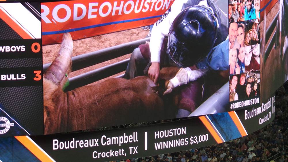 Rodeo Houston Banner Advert