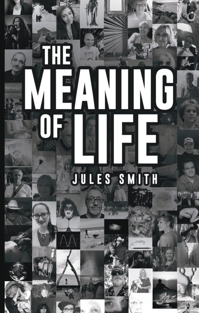 Book cover for The meaning f Life book by Jules Smith