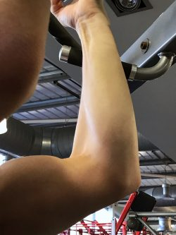muscles, training