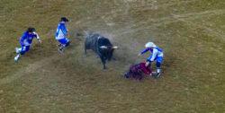 Bull rider at Houston Rodeo