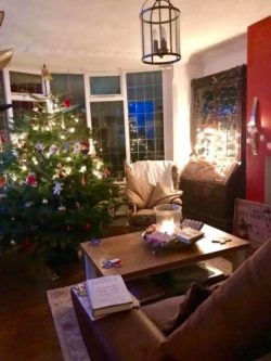 Christmas tree in a sitting room